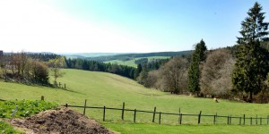 Ausblick hinter Manderfeld bei schönstem Wetter